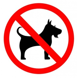 no_dog_sign.jpg